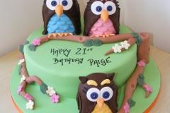 Owl family 21st Cake