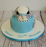 Budgie birthday cake 3d