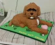 3d Dog cake 21st birthday