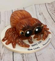 Lucas the spider birthday cake
