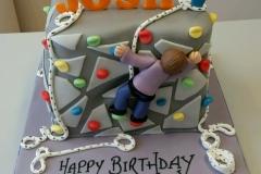 Climbing wall cake 3d