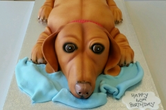 3d sausage dog cake