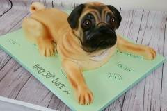 Pug dog cake 3d