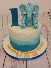 1st Birthday Elephant Cake
