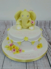 First Birthday Cake  Girls