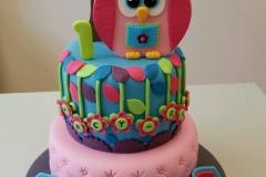 Childrens Owl cake