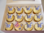 Butterfly-cupcakes-1