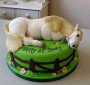Ladies horse cake