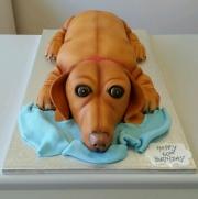 Sausage dog Dachshund birthday cake