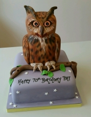 Ladies 70th Owl Cake