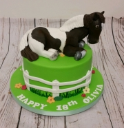 Girls 18th horse cake