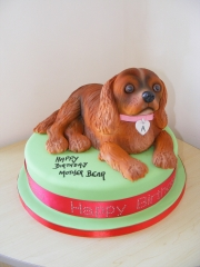 King-Charles-Cavalier-Cake