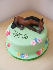 horse-cake